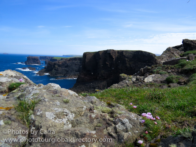 Shetland lighthouse cliffs 5