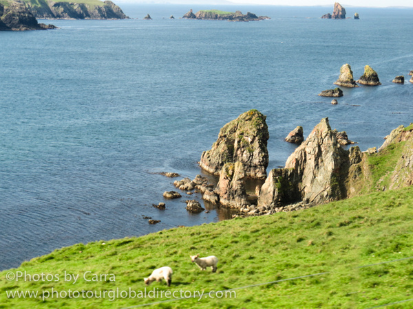 Shetland coast 2 by Carra Riley