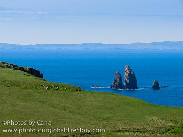 Shetland coast 10 by Carra Riley
