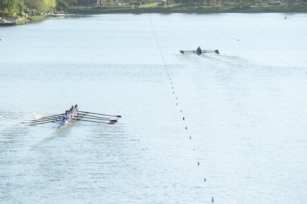 Crew Novice Boys (Redwood Shores) by AnnetteVlahos