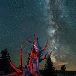Night Image Portfolio