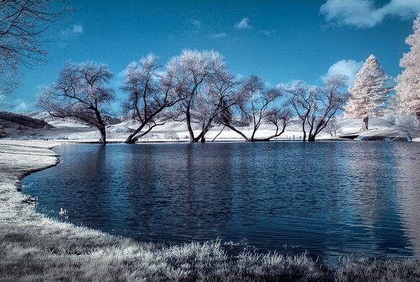 29.Pond by Harvey Abernathey