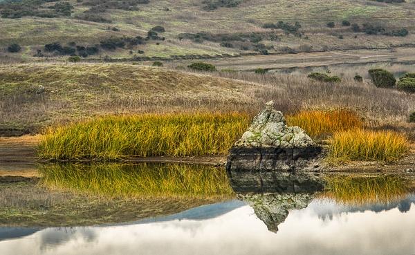 34.Nicasio Rock by Harvey Abernathey