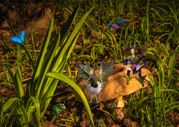 19.Toad Stool Fairies by Harvey Abernathey
