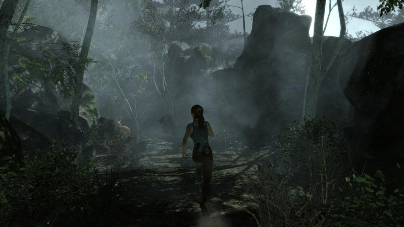 TombRaider 2014-04-08 00-24-53-89