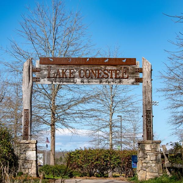 Lake Conestee by CC Robinson
