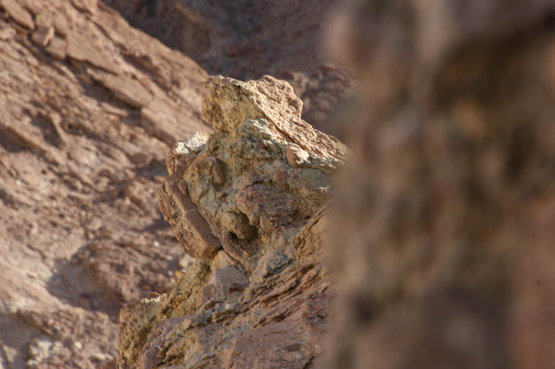 Rocks in Golden Canyon