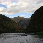 Main Salmon August 2016