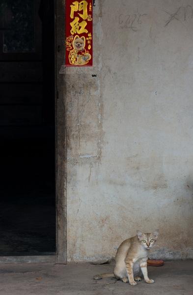 By  Phnom Sampov, Battambang, Cambodia 2018